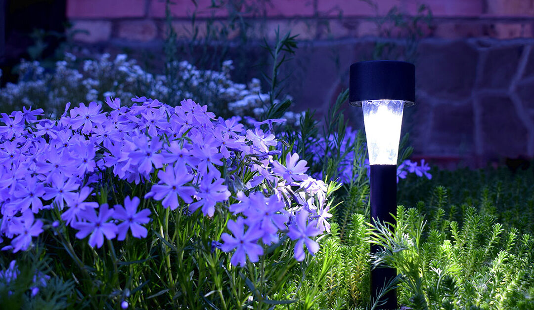 Spring Spruce Up: Installing Solar Lights in Your Yard